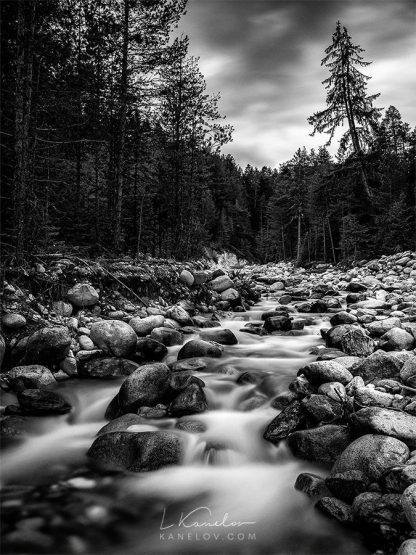 Black and white river landscape