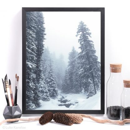 Misty winter landscape