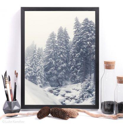 Misty winter print