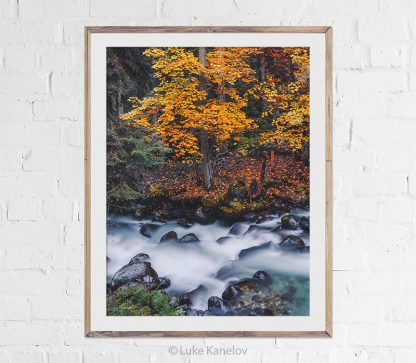 Autumn river landscape