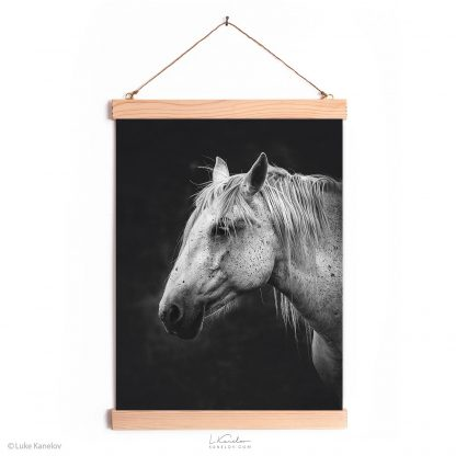 White horse wall decor