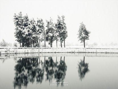 Winter lake reflections