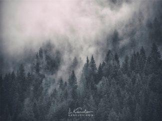 Misty forest landscape print