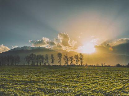 Sunset over a field landscape photography