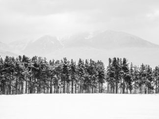 Snow landscape photography print