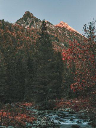 Autumn in the mountain print