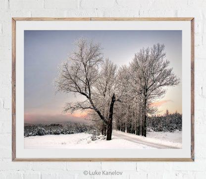 Winter road print